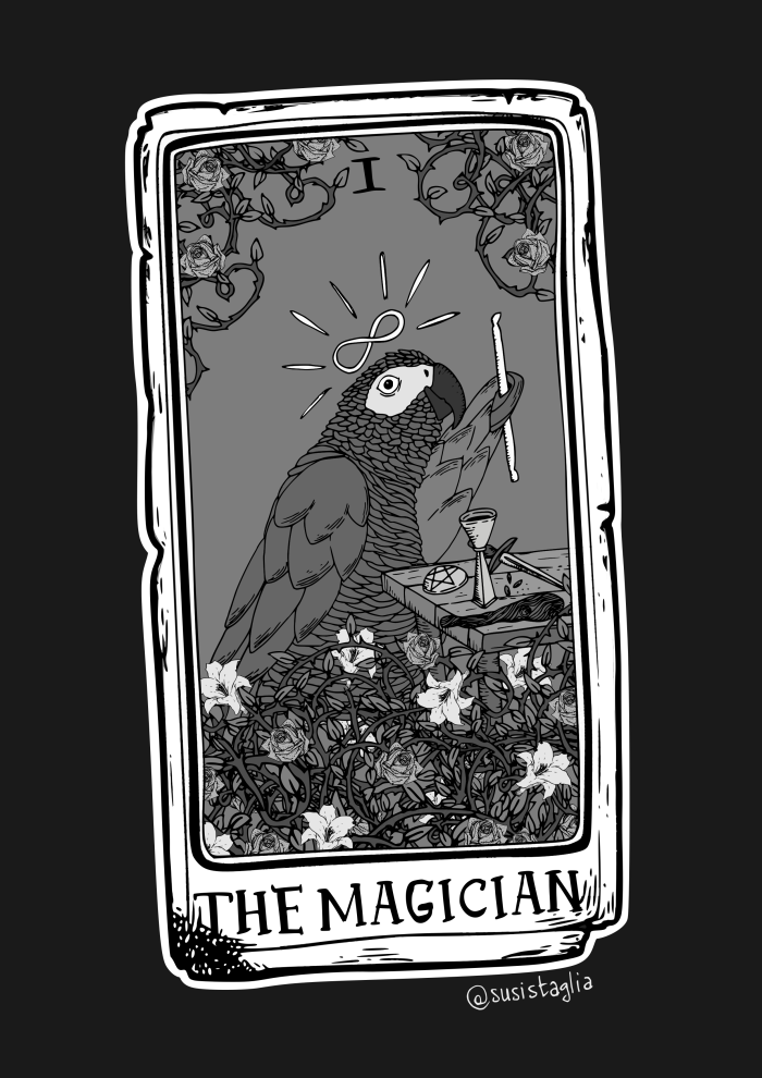 the_magician_1